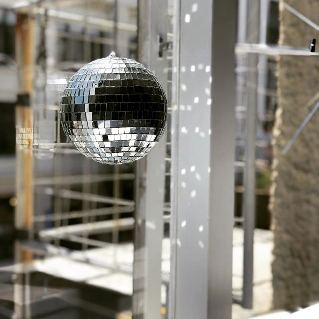 Meri Kirihimete! Nothing says Christmas like disco balls and sunshine, and the sound of opera singing from the waterfront wafting through the window... . . . #experiencethemoment #wellington #christmas #aotearoa #newzealand #discoball #summer #merikirihimete
