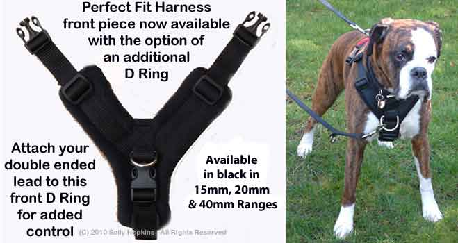 Perfect Fit Harness Info — K9 Playtime Academy Dog Training