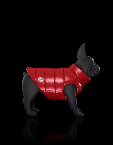 Moncler Dog Vest