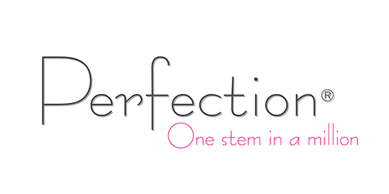 Logo Perfection-01.jpg