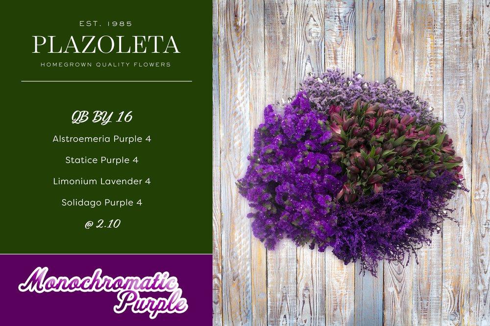 Monochromatic-Purple.jpg