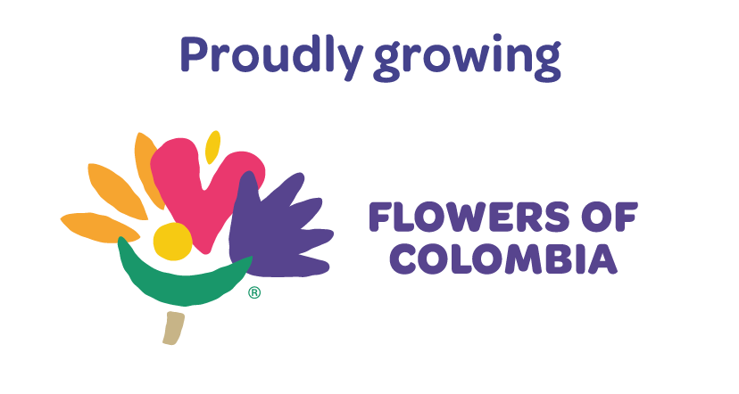 flowers-of-colombia