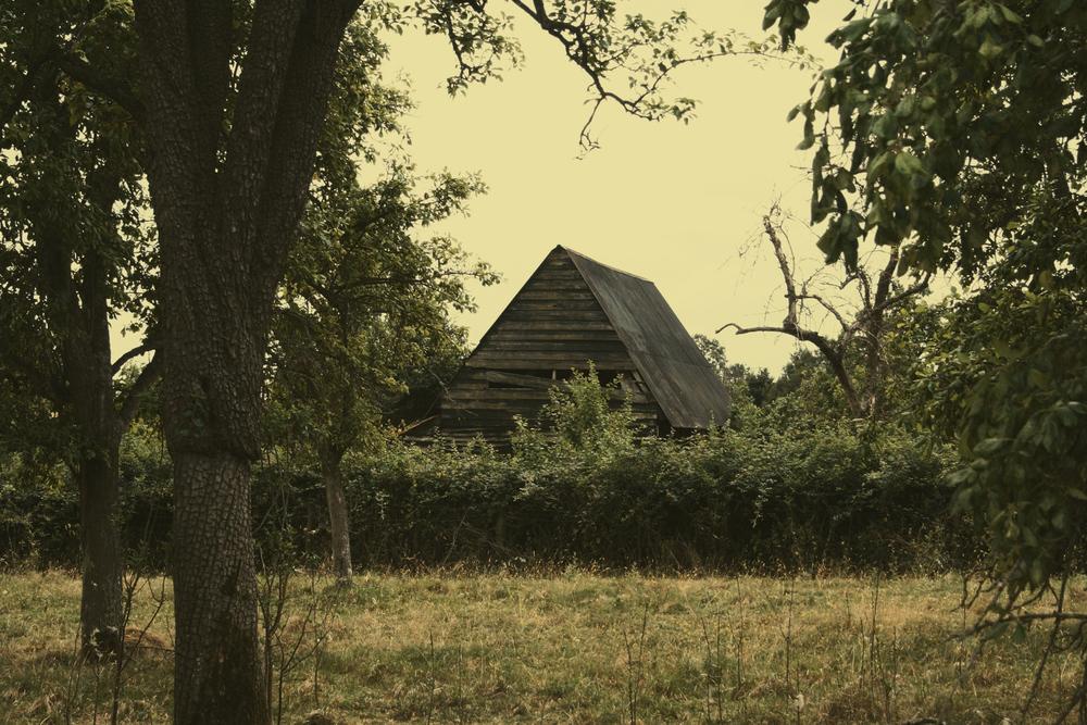cirderhouse3.jpg