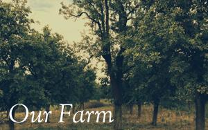 our-farm.jpg