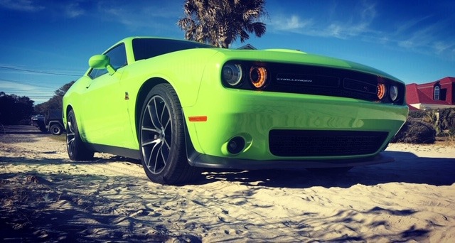 Anna M. Konya Dodge Challenger 392 South Carolina