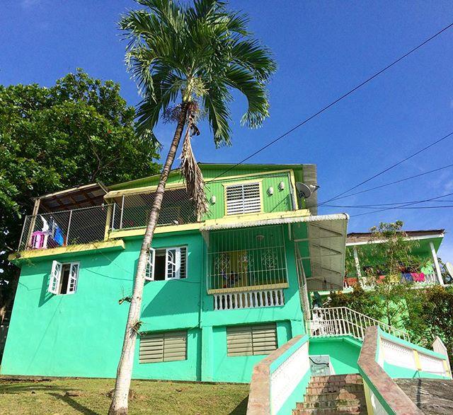 Linda la  tarde desde la casa de Tedy y Ñito en El Cerro, para una vida como obra de arte!-) #comunidadelcerro #verdesmonte