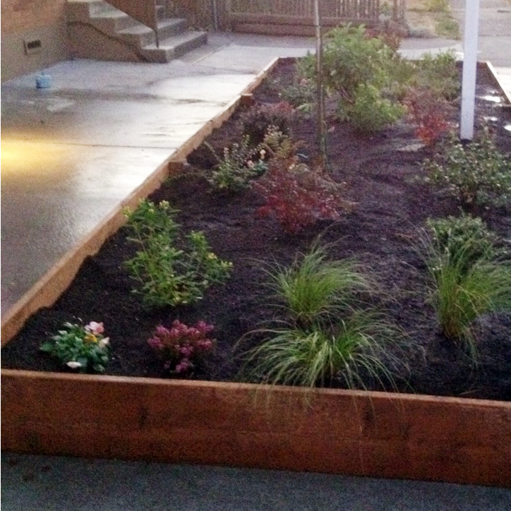 GARDEN DESIGN If you want to get your garden going, but are unsure of where to start then give us a call. We'll help you get the right plants in the right spots so that your yard looks good not only today, but several years down the line as well.