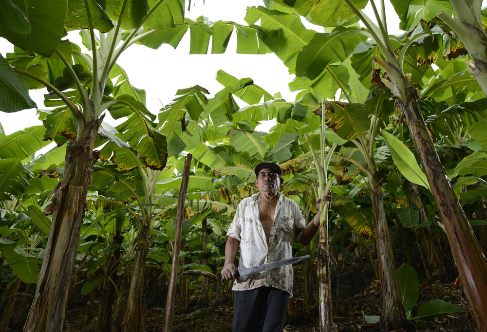 Machete #52  Ometepe, Nicaragua