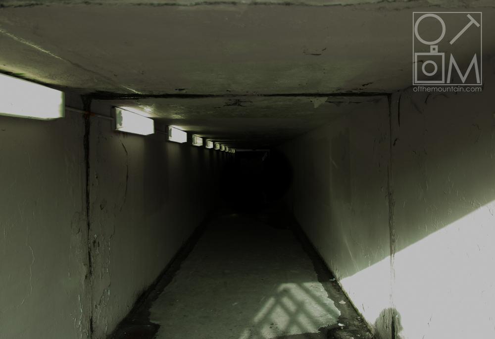 Wissahickon - Tunnel WM.jpg