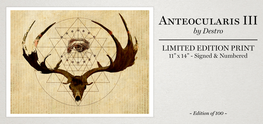 Anteocularis-III-Site-Promo-(1000px).jpg