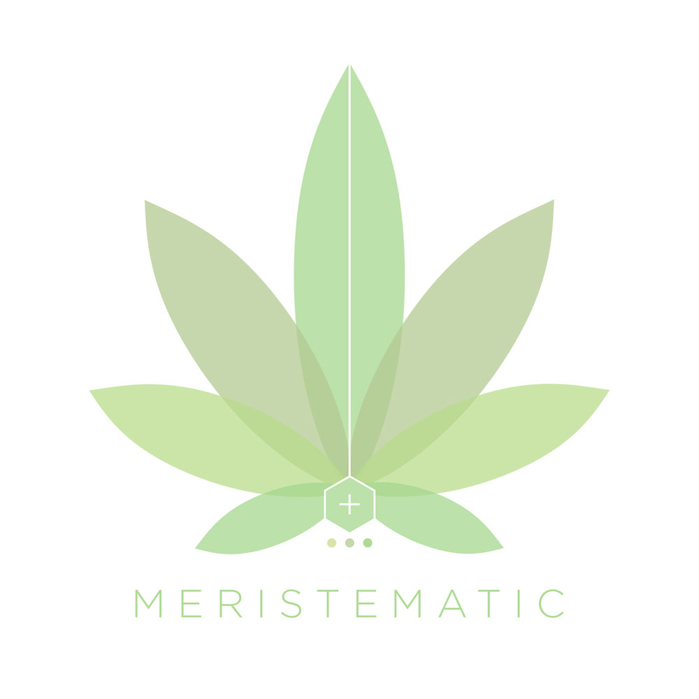 Meristmatic-2019-Logo-Concept-(1200px).jpg