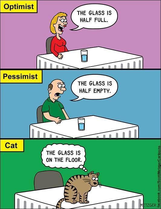 - El vaso está medio lleno.  - El vaso está medio vacío.  - El vaso están en el suelo.