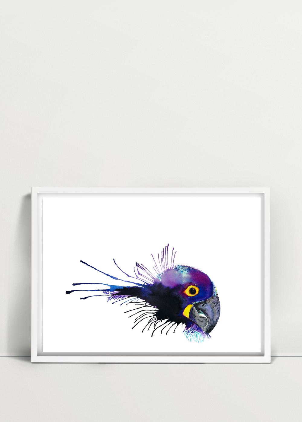Parrot_03.png