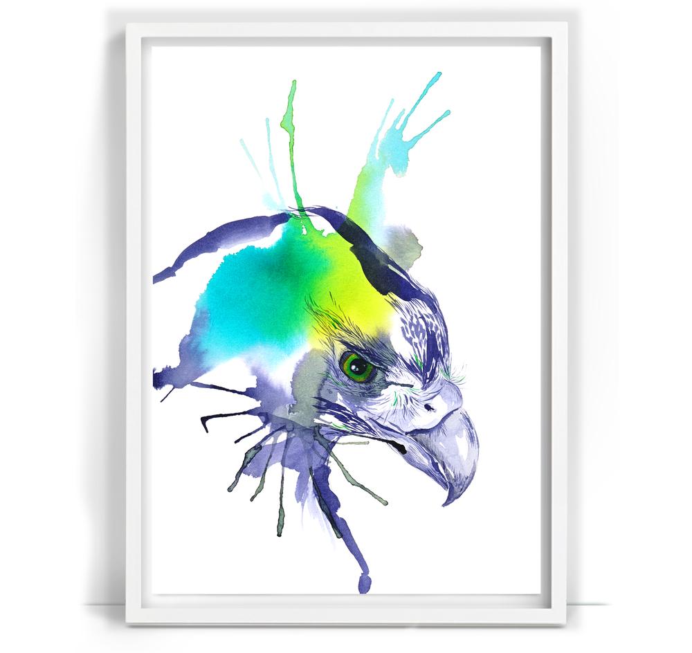 Parrot_23_A3.png