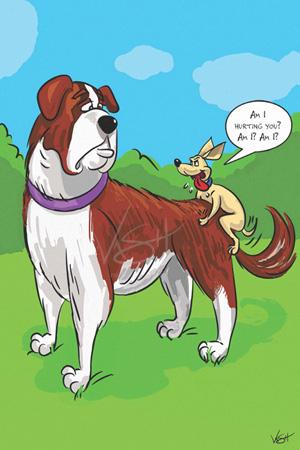Can A Dog Take A B Complex