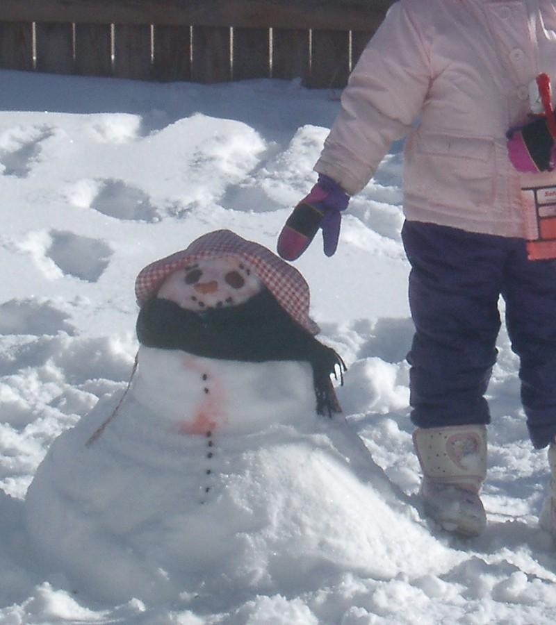 snowpaint