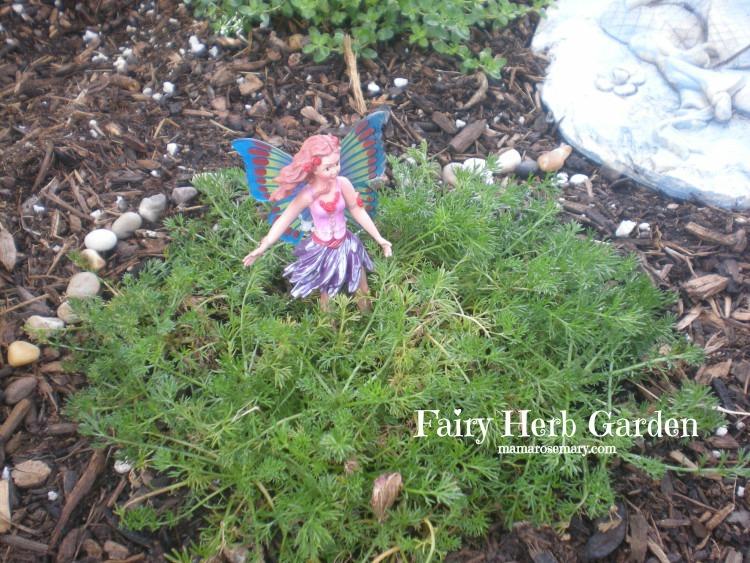 chamomile fairy3