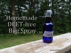 Homemade Insect Repellent That Really Works by Purposefully Simple