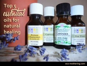 Top 5 Essential Oils for Natural Healing by Eco-Mothering