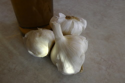 Garlic, Natures Antibiotic by Annie's Place