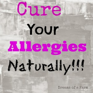 Natural Allergy Remedy by Dreams of a Farm