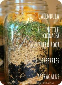 Immunity-Boosting elderberry Tincture by The Nourishing Herbalist