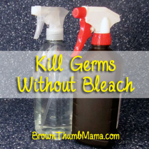 Kill Germs Without Bleach by Brown Thumb Mamma