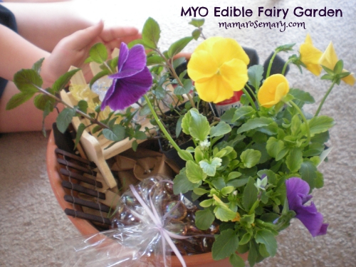 MYO Edible Fairy Garden