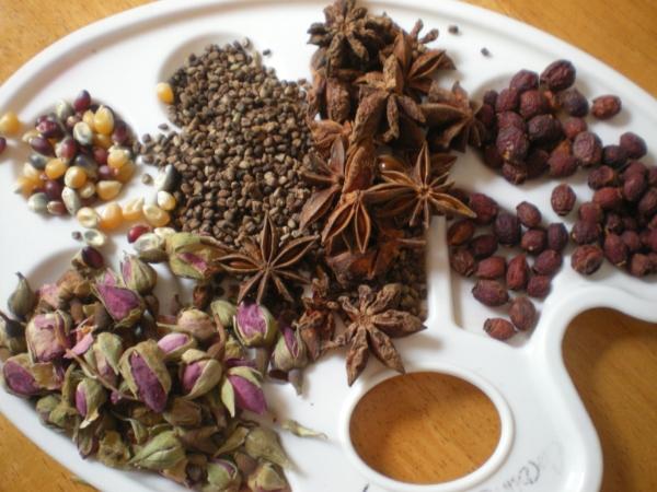 mandala botanicals