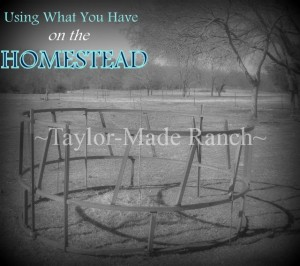 Using What You Have on the Homestead by Taylor Made Ranch