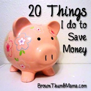 20 Things I Do to Save Money by Brown Thumb Mama