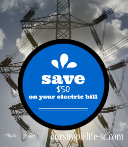 Cut Your Electric Bill by $50 by Our Simple Life