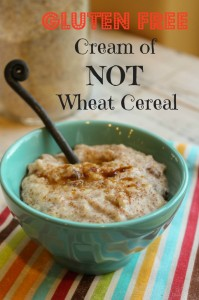 GF Cream of NOT Wheat Cereal by Tessa The Domestic Diva