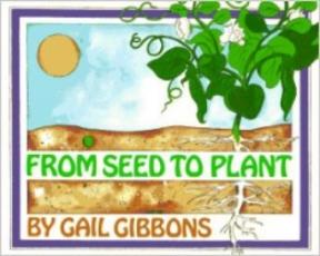 seedtoplant.jpg