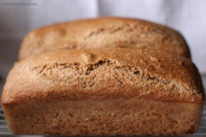 Healthy Bread and Natural Leavening by Homestead Lady