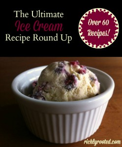 The Ultimate Ice Cream Recipe Round Up by Richly Rooted