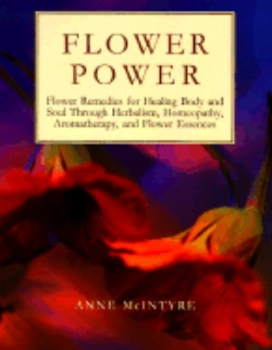 flowerpowerbookcover.jpg