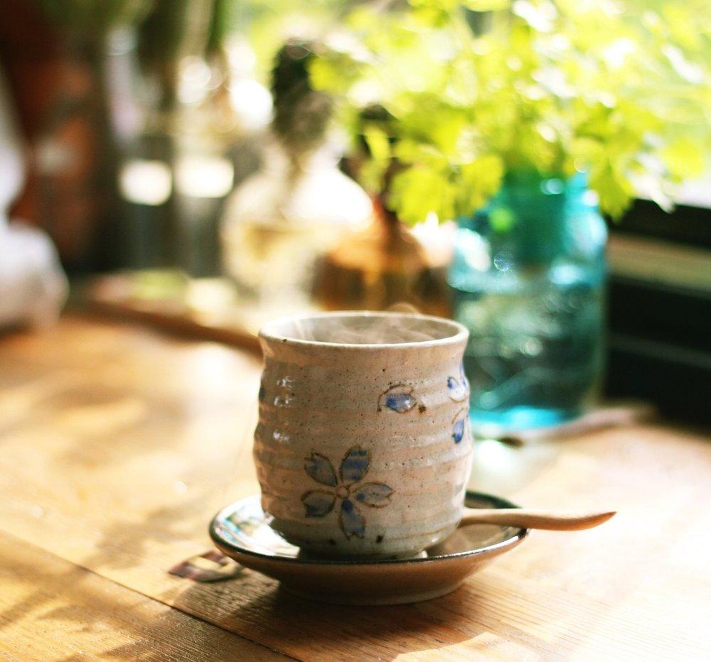 teacup-honey-fangs-483547-unsplash.jpg