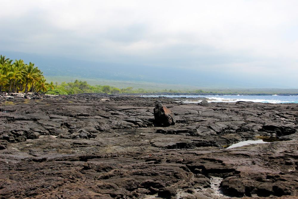 hawaii2012_146.jpg