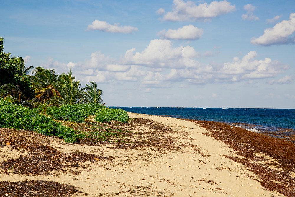 Camp Bay Beach