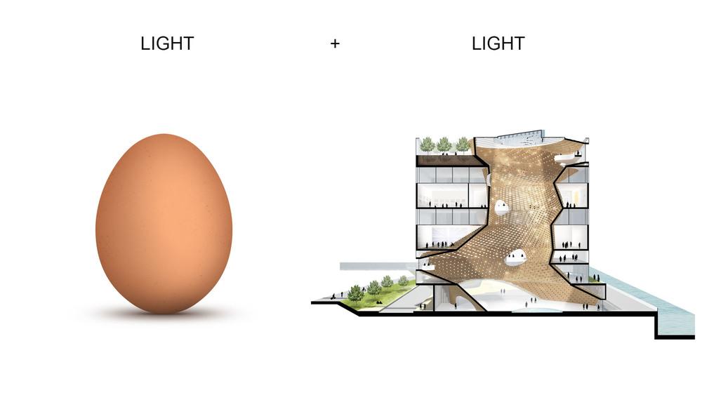 light_light.jpg