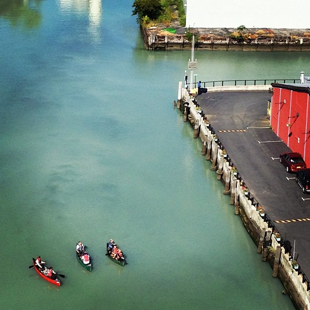 Adventure seekers in the Gowanus Canal