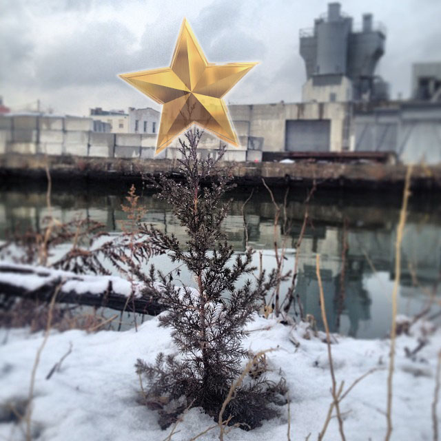 Holiday_Kind_Aesthetic_Tree_Gowanus.jpg