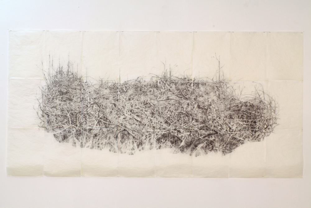 Pile, graphite and beeswax on tracing paper
