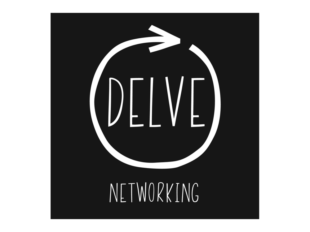 delvenetworking_logo.jpg