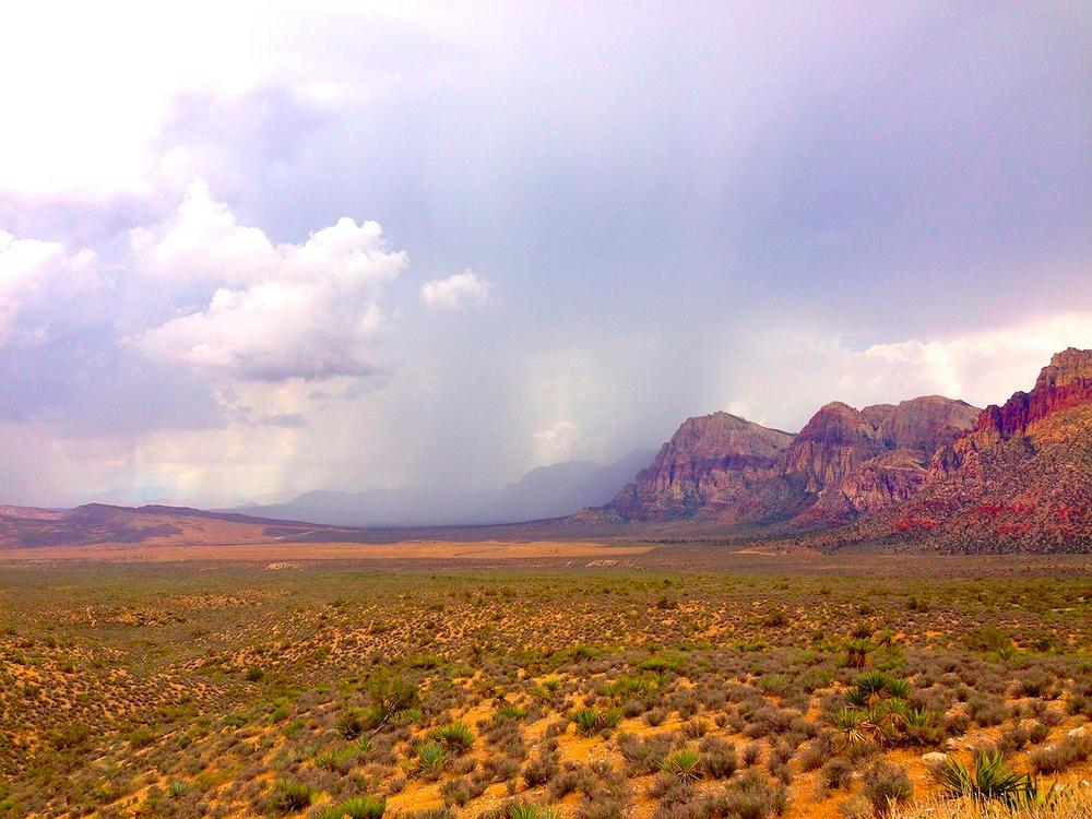 Red Rock Canyon, the perfect Day Trip from Las Vegas