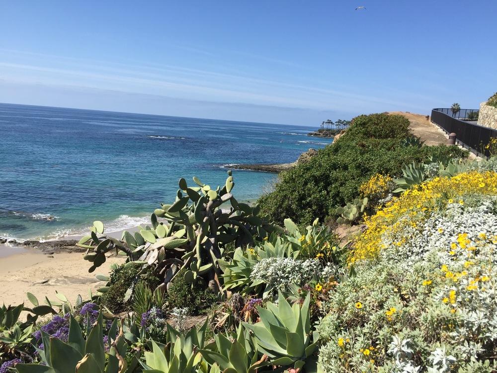 Laguna Beach...no place like it