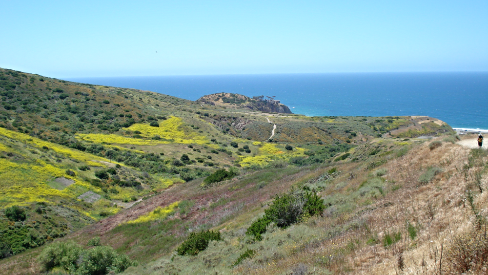 A cool breeze off the Pacific greets you as you head downhill, home to your campsite by the beach