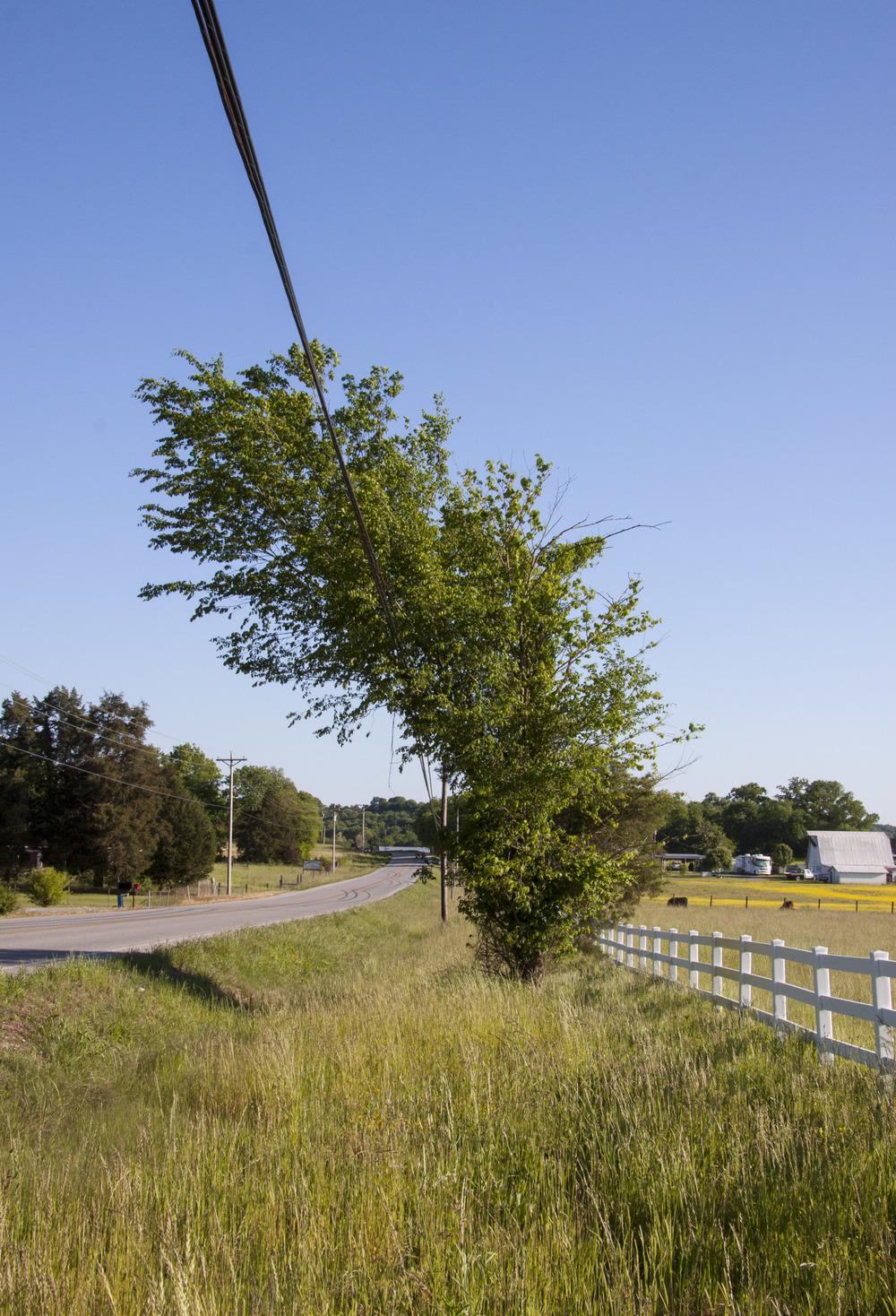 130513_Tennessee_073_A.JPG
