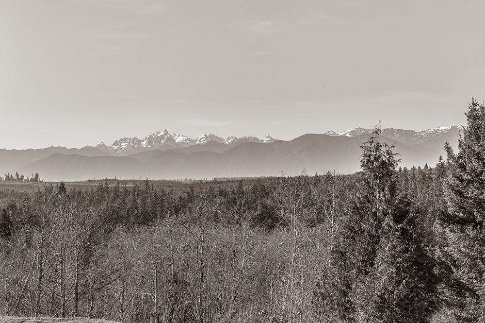 150 Mt. Christie (12).jpg